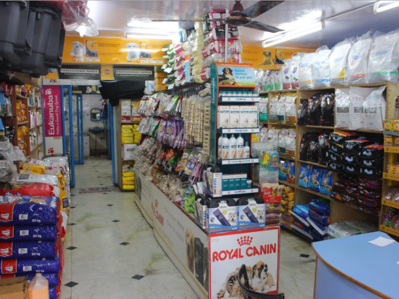 Pet Clinic in ITPL Road Bangalore