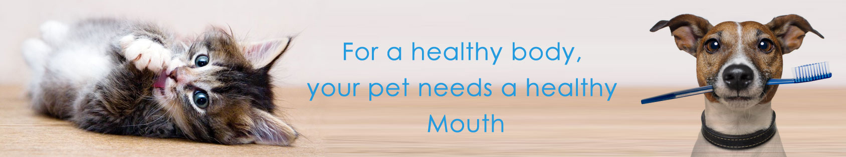 Best Pet Dental care