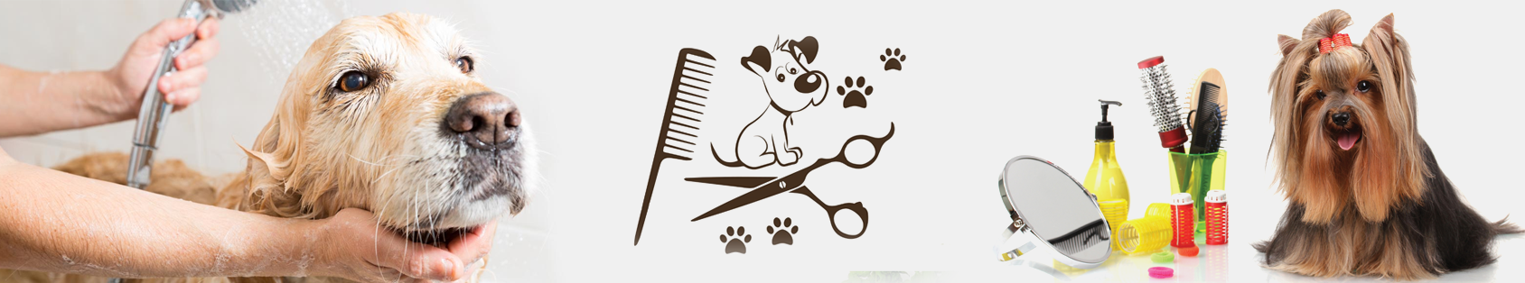 Pet Grooming in Bangalore