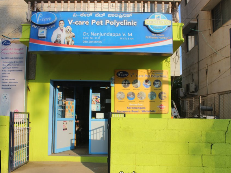 Pet Shop in Whitefield Bangalore
