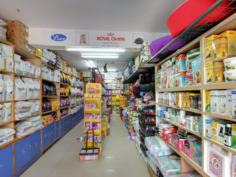 Pet Shopping in Bangalore