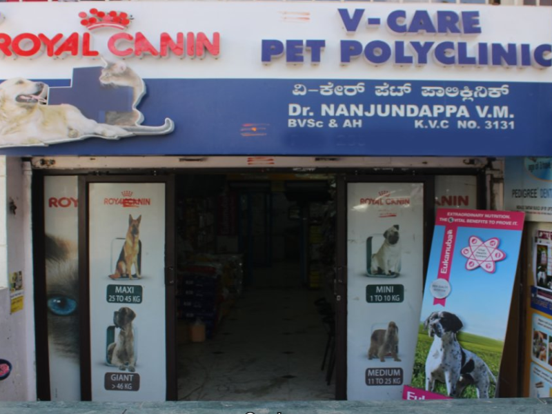 Veterinary Hospital Koramangala Bangalore